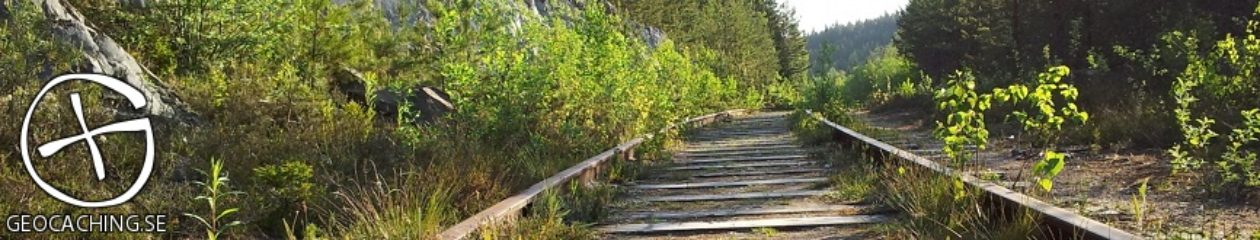 Intresseföreningen Geocaching i Sverige